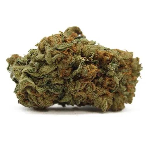 Black Widow Marijuana