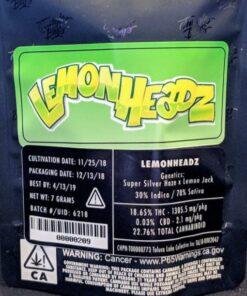 Buy Jungle Boys Lemon Headz