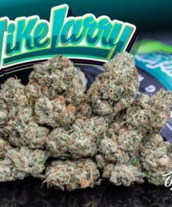 Jungle Boys Mike Larry For Sale