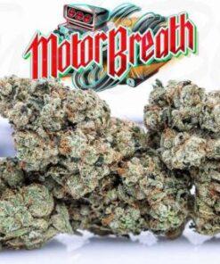 Motor Breath strain