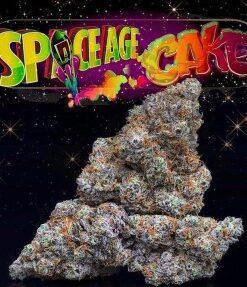 Jungle Boys Space age cake strain